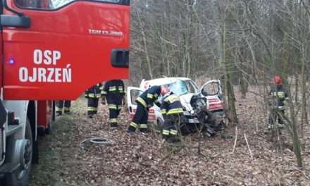 Tragiczny wypadek w gminie Ojrzeń. Nie żyje 69-letni mężczyzna