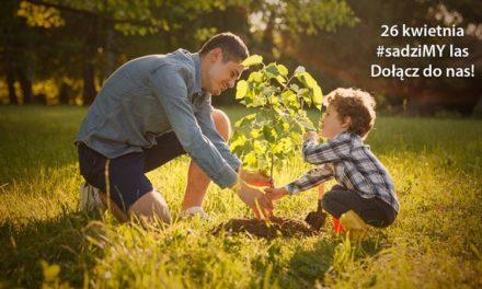 Nadleśnictwo będzie rozdawać sadzonki drzew