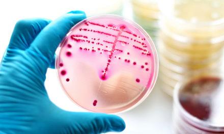 Ciechanów: Nie pijcie wody z kranu! Są w niej wciąż bakterie coli
