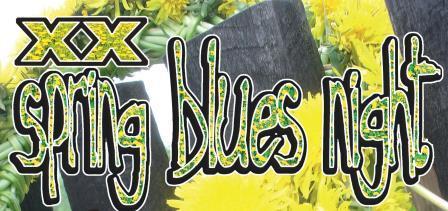 Jubileuszowy XX Spring Blues Night