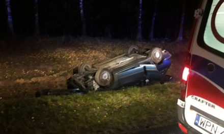 Samochód uderzył w jelenia