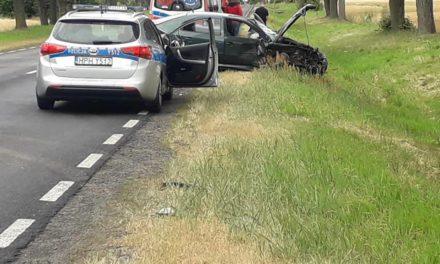 Dwie osoby ranne. Groźny wypadek w Ujazdówku
