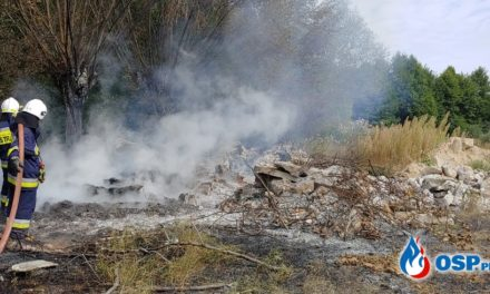 Płonęły drzewa i nieużytki w Dreglinie