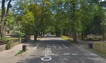 Ciechanów: Radna Smolińska interpeluje o wycięcie drzew na ul. Orylskiej