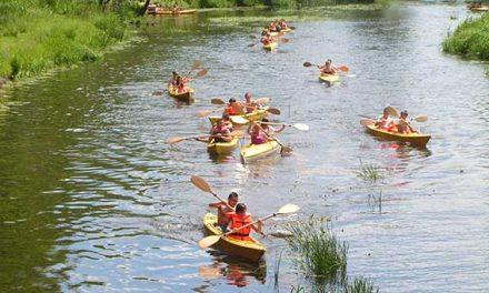 Spływy Kajakowe Wkrą