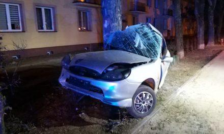 Ciechanów: Puma wyhamowała na drzewie