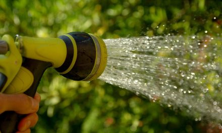 Urząd Gminy Ciechanów apeluje o ograniczenie zużycia wody